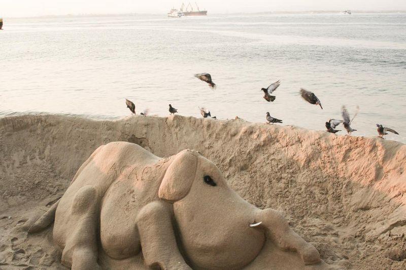 Elefant aus Sand